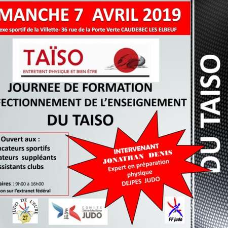 affiche stage taiso